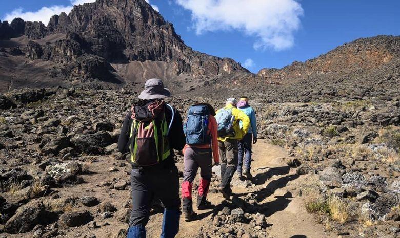 Kilimandjaro : Voie Machamé & Safari au Serengeti