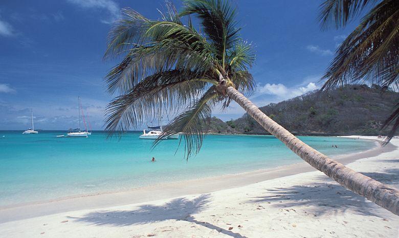 Tobago Cays Dream Premium