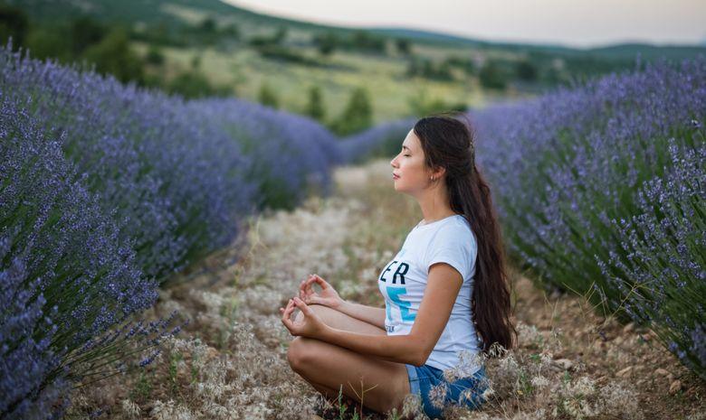 Stage de yoga & relaxation au cœur de la Provence