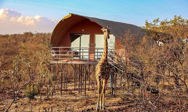 Grands parcs en version luxe - safari privé