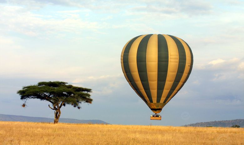 Safari premium & vol en Montgolfière en Tanzanie