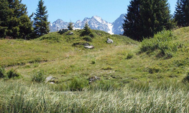 Retraite Yoga, Randonnée & Balnéo dans les Alpes