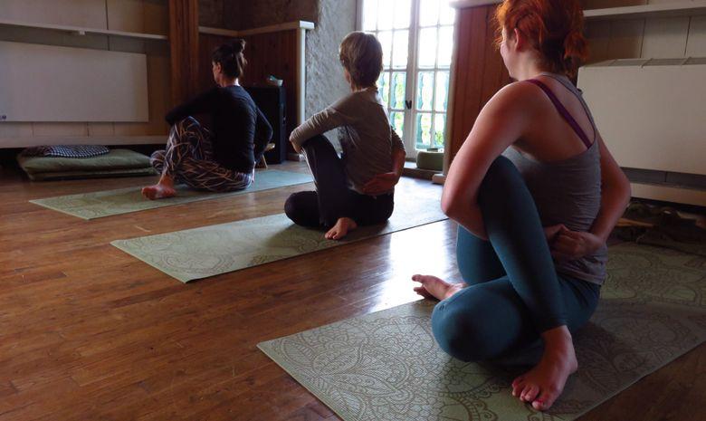 Stage Yoga et Coaching avec les chevaux en Ariège