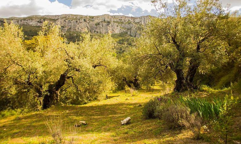 Retraite Yoga au coeur des montagnes Espagnoles