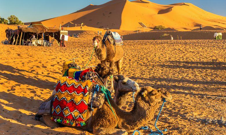 Les portes du désert Marocain en bivouac berbère