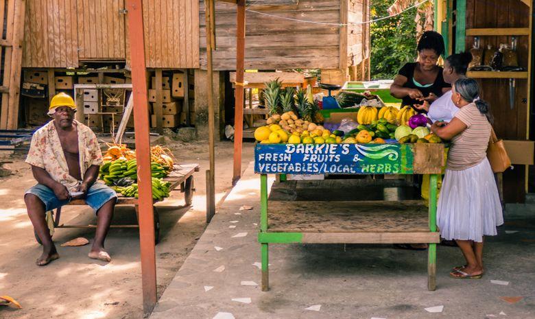 Croisière Mahe 36 Grenadines