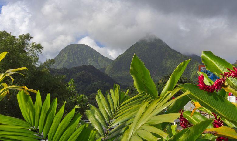 Croisière cabine Tour de Martinique
