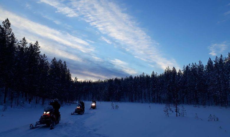 Chiens de traineau, motoneige & évasion en Laponie