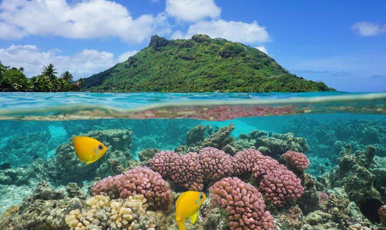 Croisière privée one way Tahiti - Bora - cata 41'