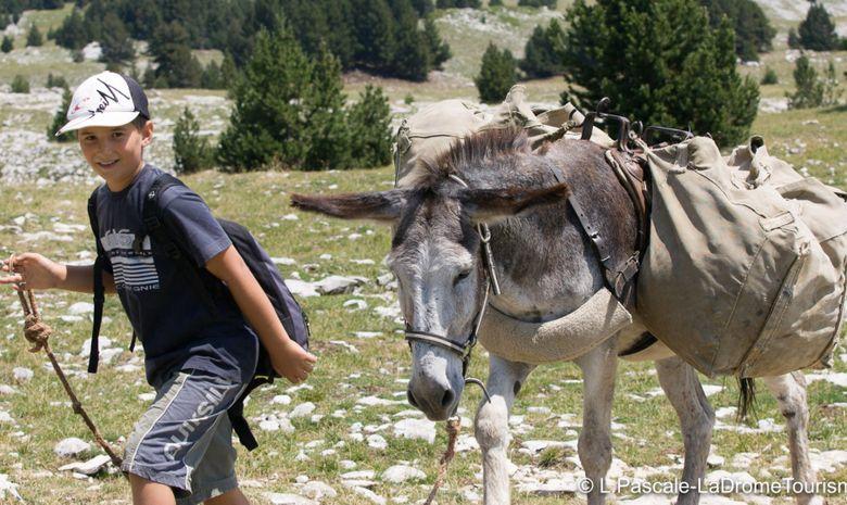Trek en famille avec les ânes au bord de la Drôme