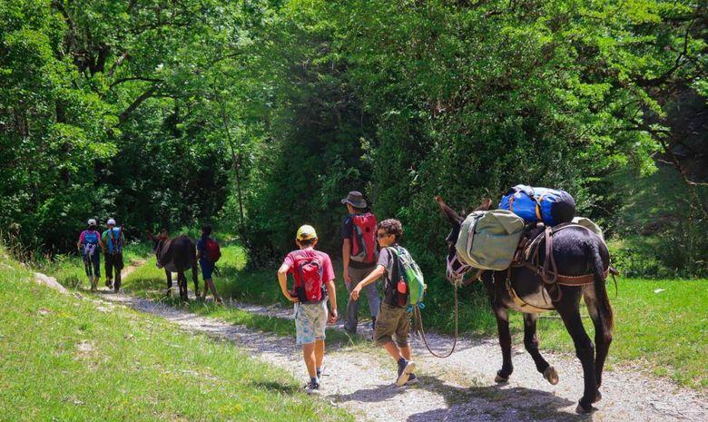 Trek en famille avec les ânes le long de la Drôme